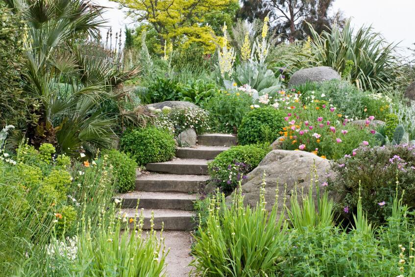 Gardden view - steps